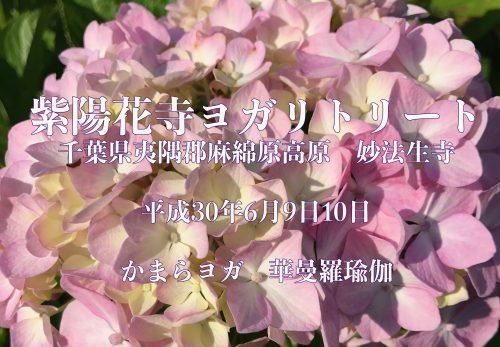 紫陽花寺ヨガリトリート 6月9,10日募集中